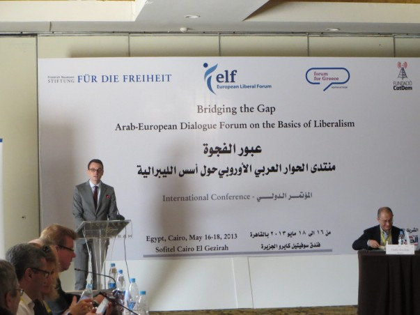Sven Speer at the Arab-European Dialogue Forum, Cairo